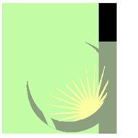 Rasadnik sadnica - Sadnice